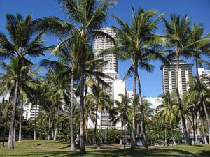 Honolulu, Insel Oahu, Hawaii