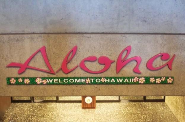 AlohaHNL